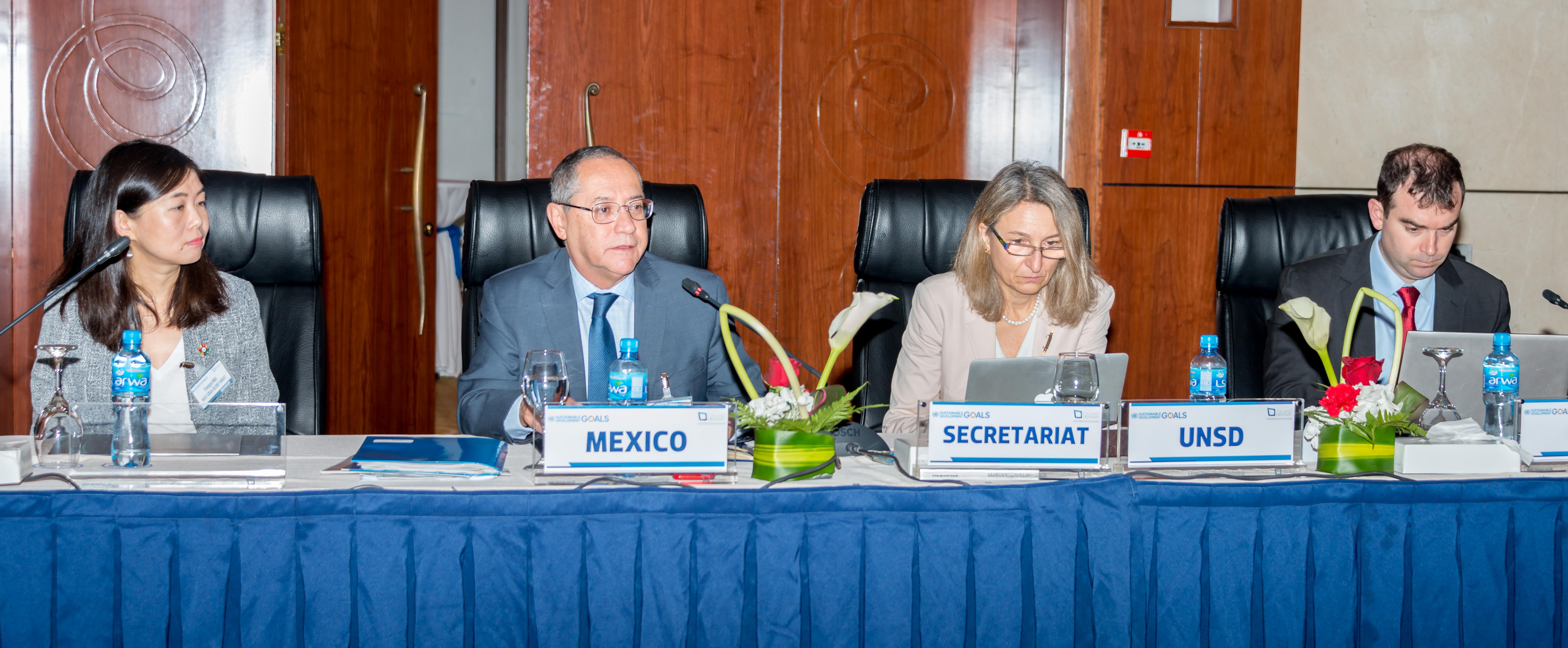 UN Meeting: International Committee of Experts on Indicators of Sustainable Development Goals 2030